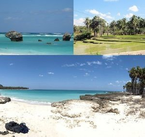 rote island island tours